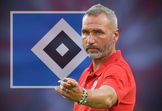 Dehm Jannik Holstein Kiel Bundesliga Hamburger SV Tim Walter Karlsruher SC Ole Werner Uwe Stöver Jae-Sung Lee